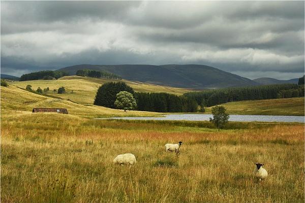 Loch Shandra by MalcolmM