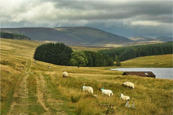 Loch Shandra 3 by MalcolmM