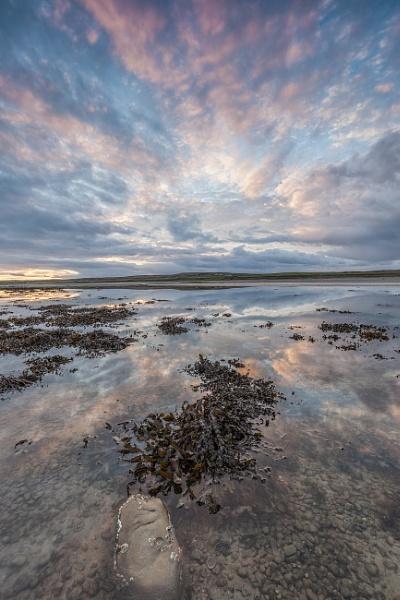Islay evening