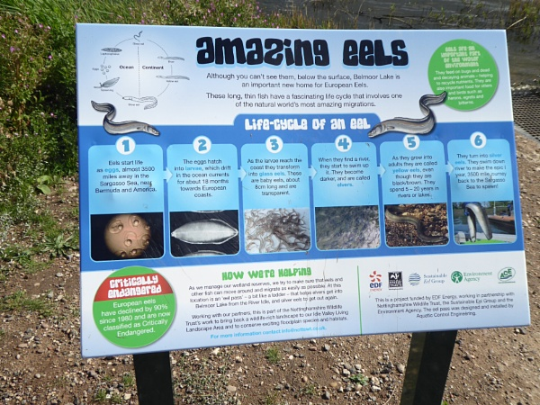 Useful items at Idle Valley Park by Gypsyman