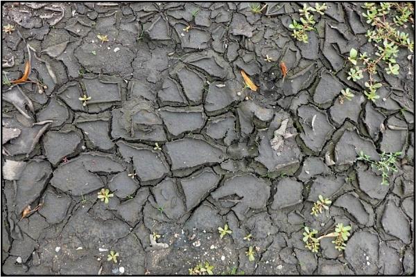 dry soil by FabioKeiner