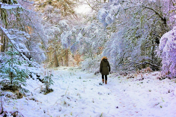 Winter wonderland walk. by macprints