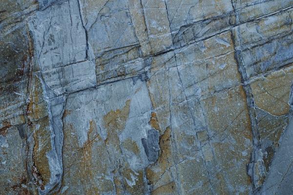 Metamorphic rock by fredsphotos