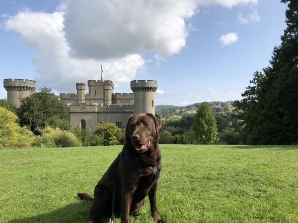 Eastnor Castle by darrenwilson41