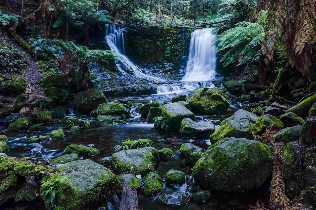 Mt Field water fall, Tasmania