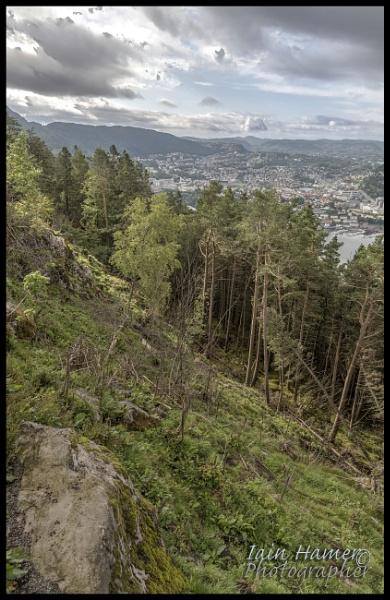 Bergen viewpoint by IainHamer