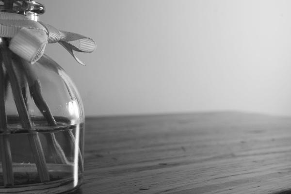 Reed diffuser (mono) by PhotoLinda
