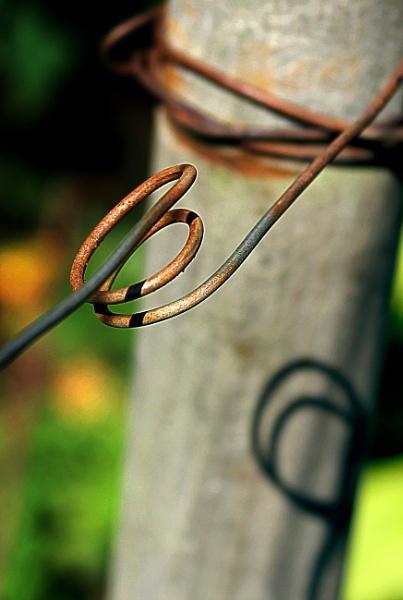 Rusty wire by helenlinda