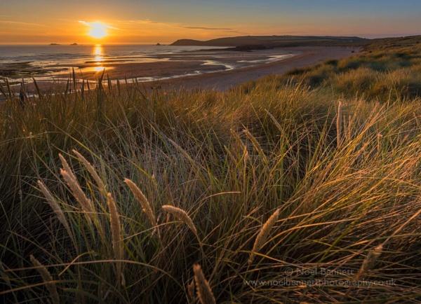 Summertime by NoelBennettPhotography
