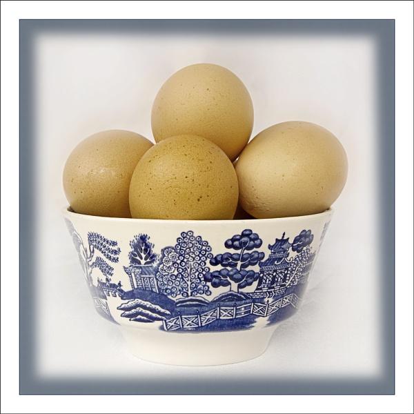 Eggcitement by AlfieK