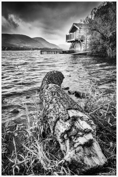 Log in the Lake by Billdad