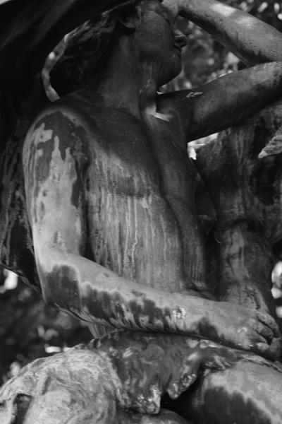 """~ \""""Bronze Twins \'Diane\' \"""" by LexEquine"""