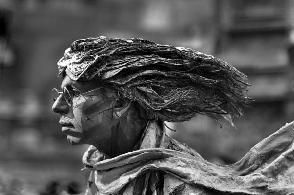 Bad hair day by elmer1