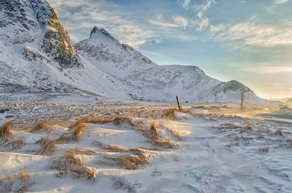 Lofoten Grasslands by markst33