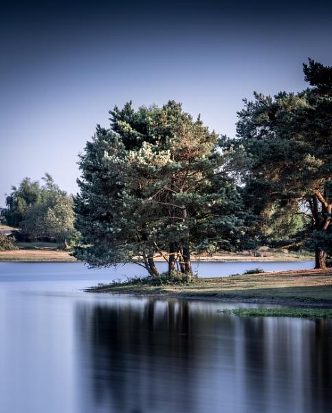 Hatchet Pond by true
