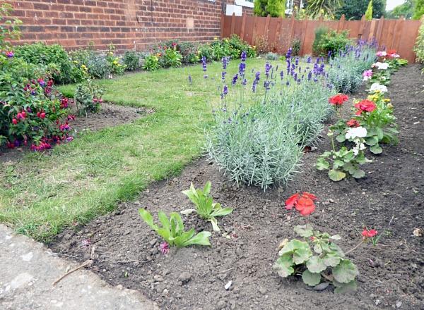 Front Garden by Gypsyman