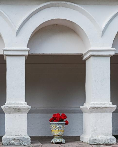 Geraniums and columns . by kuvailija