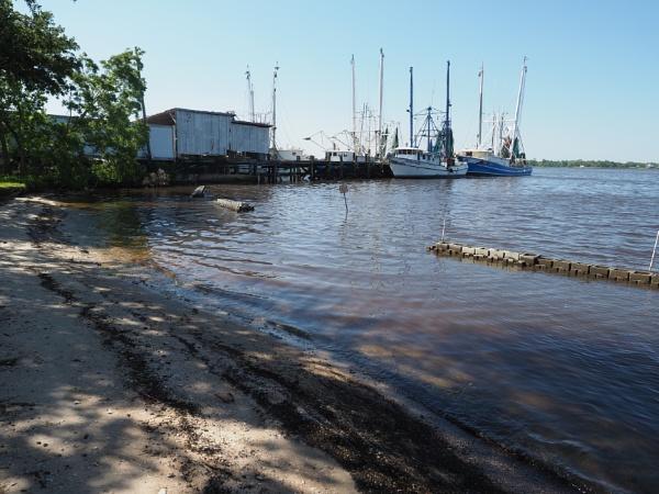 Sea Level Rise #47