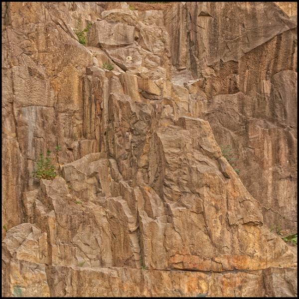 It rocks.... by totti