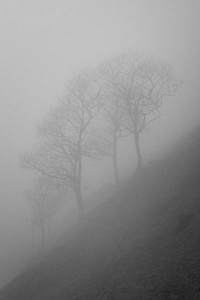 Pennine Fog by AlfieK