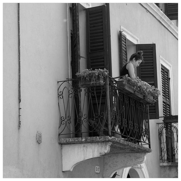 My Giulietta from Verona