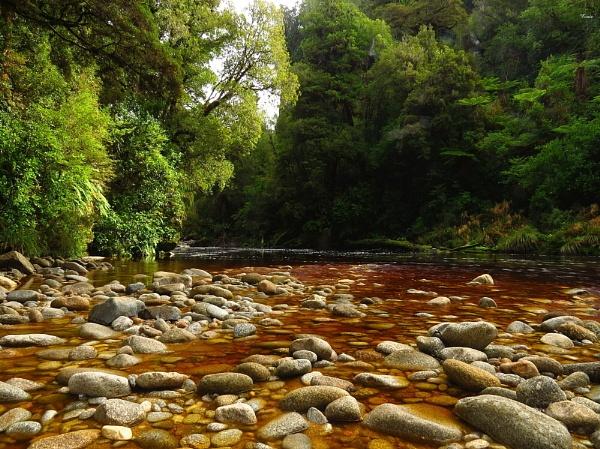 Oparara River 8 by DevilsAdvocate