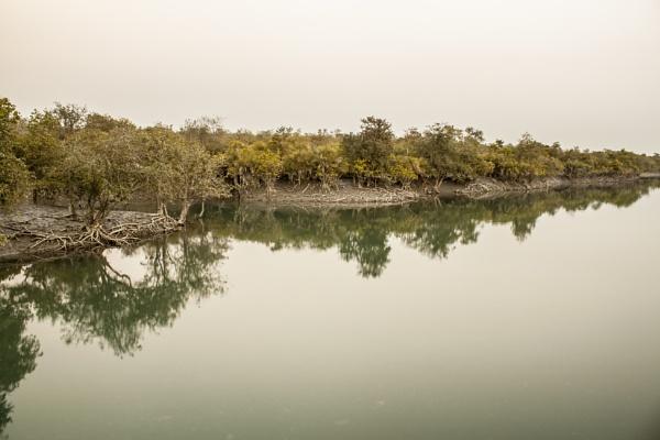 Sundarban by clicknimagine