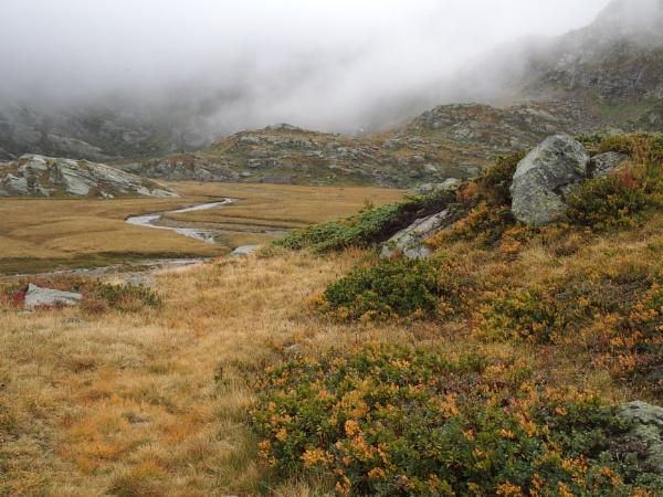 Great Paradise National Parck, September color