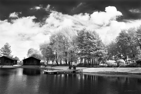 pine lake by chrisg7syt