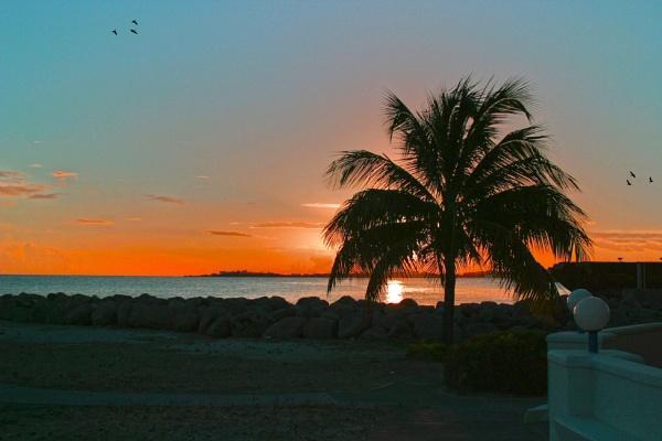 sun set by chrisg7syt