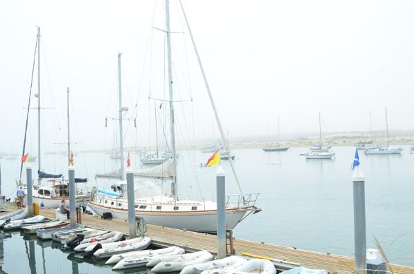 Misty Ships by blackbird3