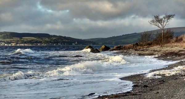 Autumn on Loch Striven Shore.