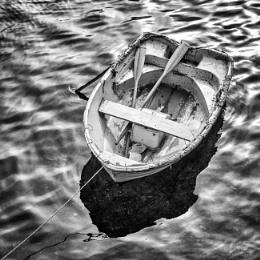 row, row, row .....