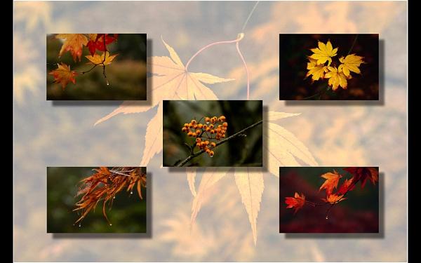 Autumn by dven