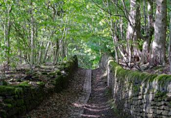 Sparable Lane