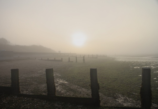 Foggy Hill Head by frenchie44