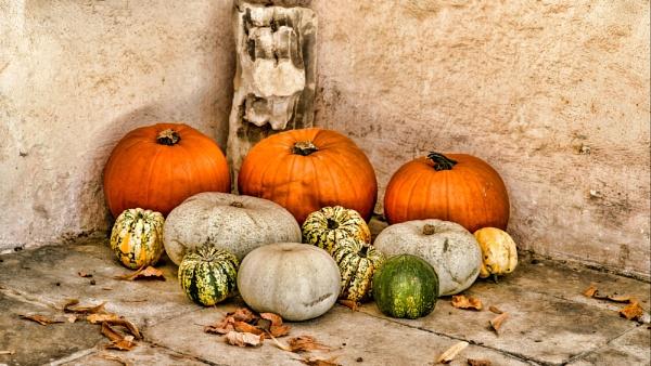 Pumpkin Corner by tonyheps