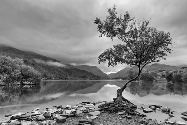 Llyn Padarn by jasonrwl