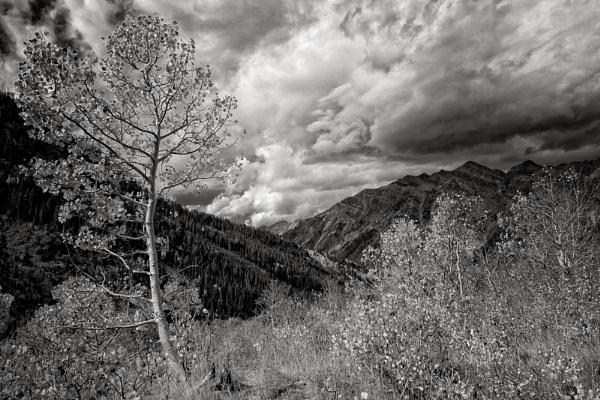 Autumn storm by mlseawell