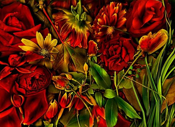 Les fleurs by mtuyb