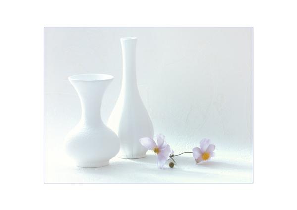 White Vases by BigAlKabMan