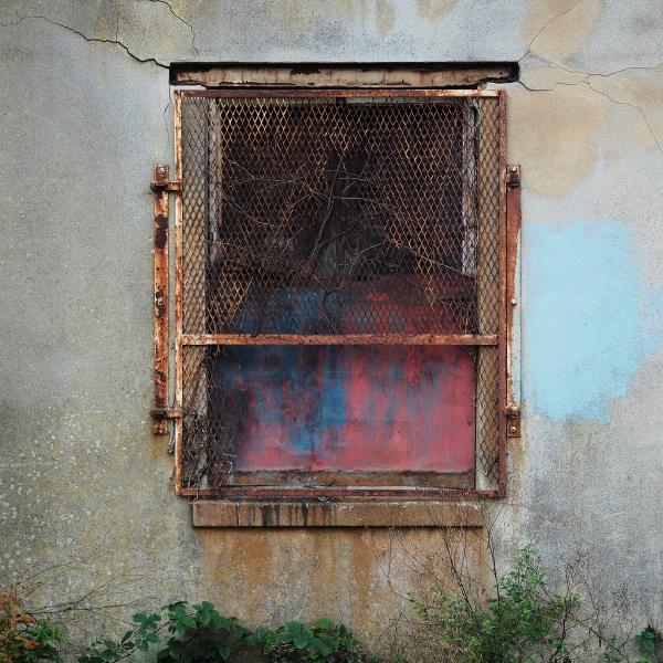 Wall art by fredsphotos