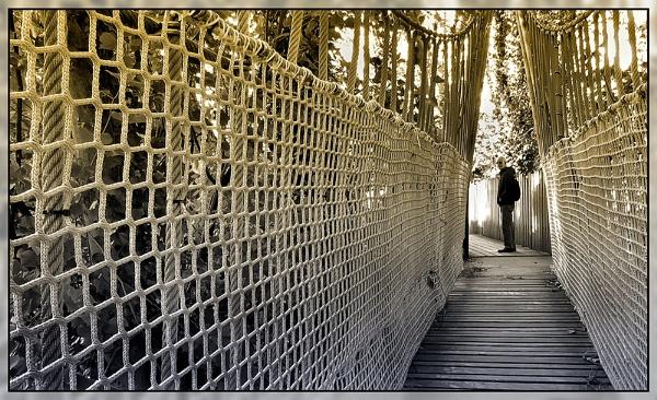 Rope Bridge2 by Sylviwhalley