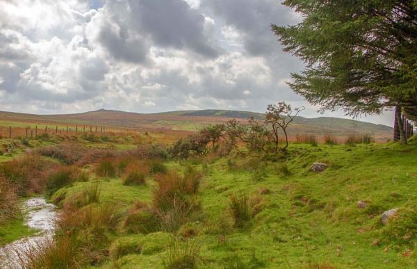 Bodmin Moor by interchelleamateurphotography