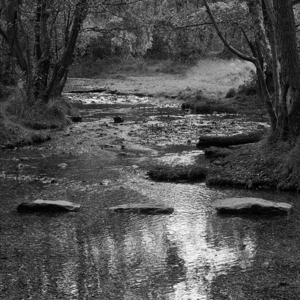 Babbling brook by fredsphotos