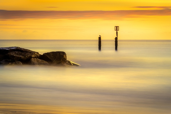 Rocks, Posts and Gull by barrywebb