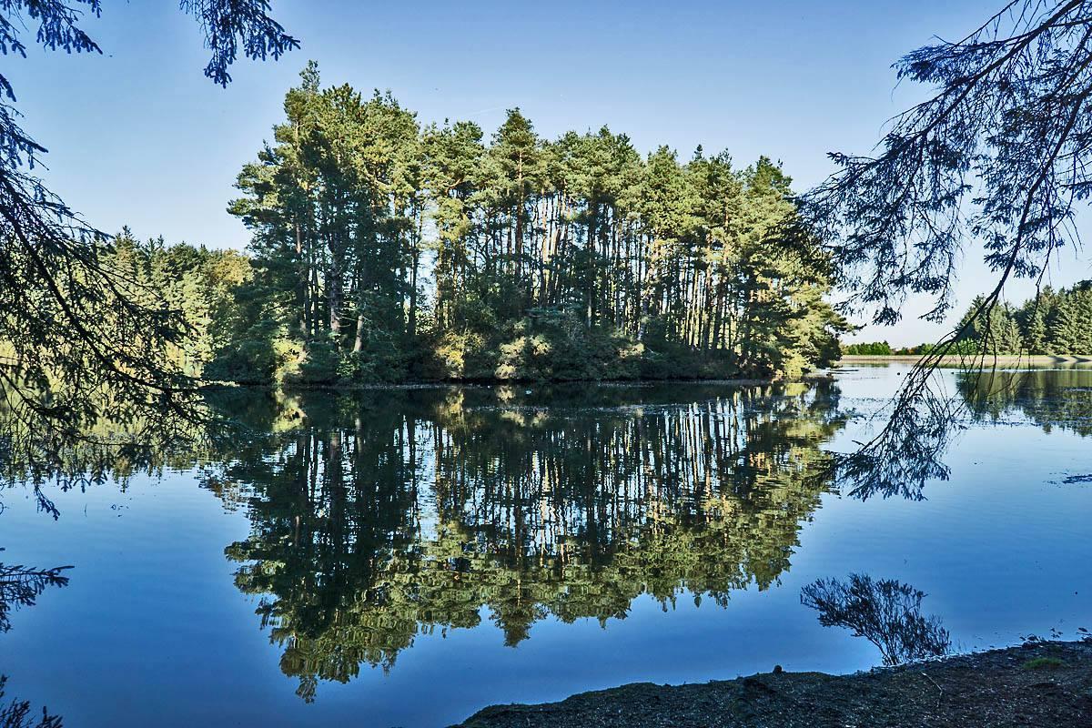 Reflections on Beecraigs
