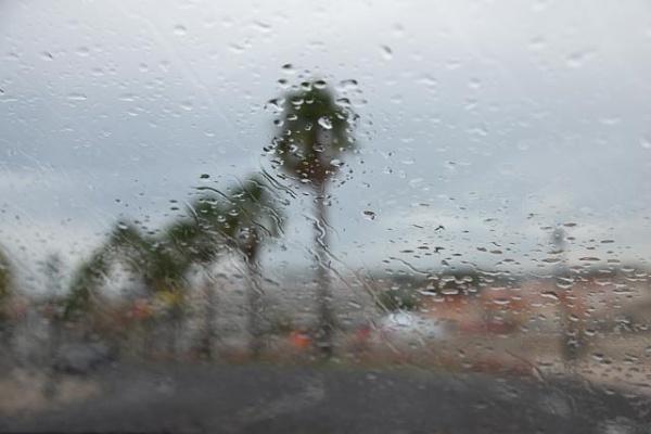 Rain by HarrietH