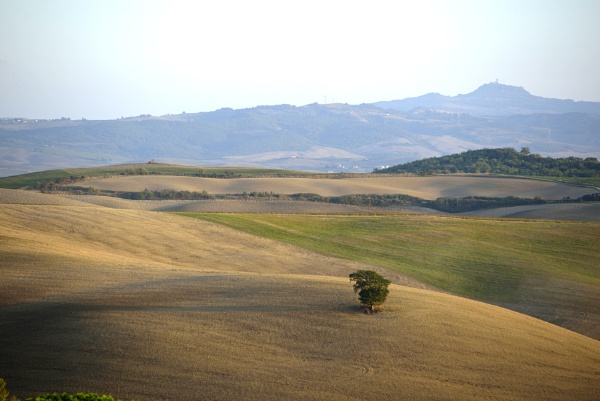 Val d\'Orcia (Tuscany) by luminus