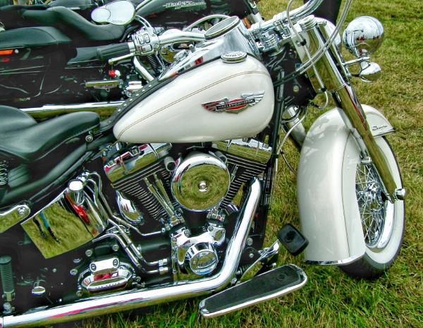 Harley by KrazyKA
